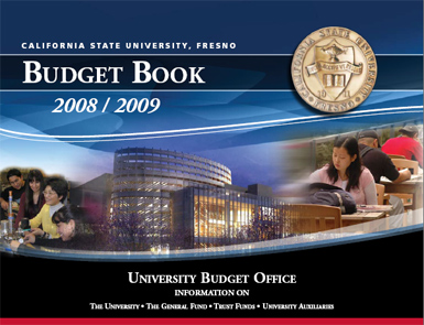 Budget Book 2008-2009 introduction picture